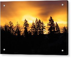 Sky On Fire Acrylic Print by Shirley Heyn