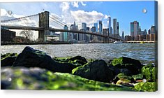 Acrylic Print featuring the photograph Skyline by Mitch Cat
