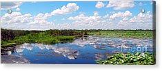Skyscape Reflections Blue Cypress Marsh Near Vero Beach Florida C5 Acrylic Print