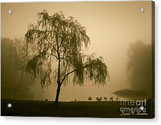 Slater Park Landscape No. 1 Acrylic Print by David Gordon