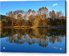 Fraser River Arm  Acrylic Print by Heather Vopni