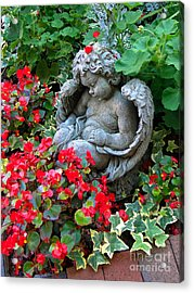 Sleeping Angel Acrylic Print by Sue Melvin
