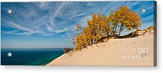 Sleeping Bear Overlook Acrylic Print