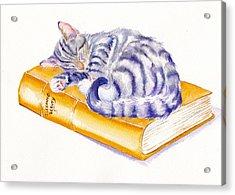 Sleeping Beauty Acrylic Print by Debra Hall