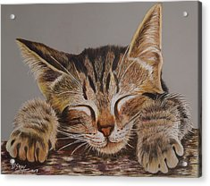 Sleeping Beauty Acrylic Print by Don MacCarthy