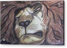 Sleeping King Acrylic Print by Brad Hutchings