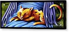 Sleeping Kitty Acrylic Print