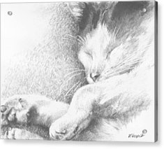 Sleeping Sadie Acrylic Print