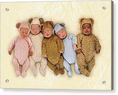 Sleepy Bears Acrylic Print