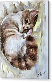 Sleepy Cat 2 Acrylic Print
