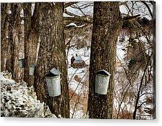 Sleepy Hollow Farm Dressed For Spring Acrylic Print by Jeff Folger