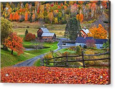 Sleepy Hollows Farm Woodstock Vermont Vt Autumn Bright Colors Acrylic Print