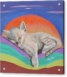 Sleepy Time Acrylic Print by Phyllis Kaltenbach