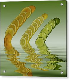 Acrylic Print featuring the photograph Slices  Grapefruit Lemon Lime Citrus Fruit by David French