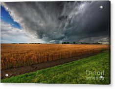Slices Of Saskatchewan Acrylic Print by Ian McGregor