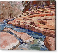 Slide Rock Acrylic Print by Sandy Tracey