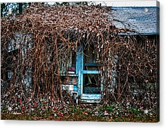 Slightly Overgrown Acrylic Print by Christopher Holmes