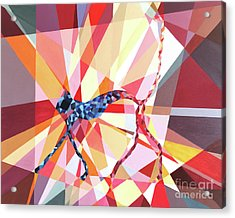 Slinky Cat Acrylic Print by Christopher Page