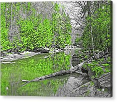 Acrylic Print featuring the photograph Slippery Rock Creek In Spring by Digital Photographic Arts