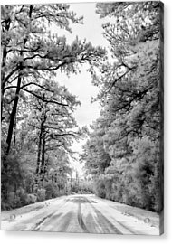Slippery When Frozen Acrylic Print