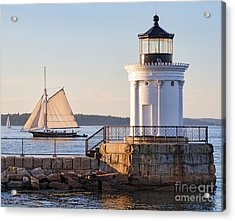 Sloop And Lighthouse, South Portland, Maine  -56170 Acrylic Print