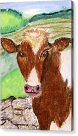 Acrylic Print featuring the drawing Slopoke by Barbara Giordano