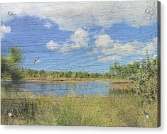 Small Pond With Weathered Wood Acrylic Print by Rosalie Scanlon