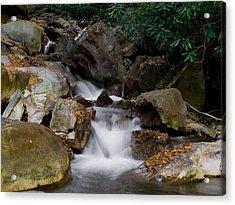 Small Stream Acrylic Print by Bob Hahn