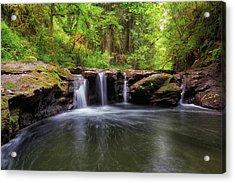 Small Waterfall At Rock Creek Acrylic Print by David Gn