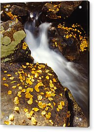 Small Waterfall In Autumn Acrylic Print by Douglas Pulsipher