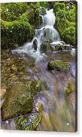 Small Waterfalls Along Wahkeena Creek Acrylic Print