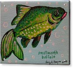 Smallmouth Buffalo Acrylic Print by Emily Reynolds Thompson