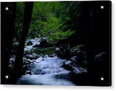 Smokey Mountain Creek Acrylic Print by Martin Morehead