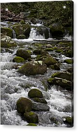 Smokies In The Spring Acrylic Print