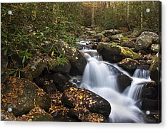 Smokies Stream In Autumn Acrylic Print by Andrew Soundarajan