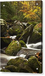 Smokies Waterfall Acrylic Print by Andrew Soundarajan