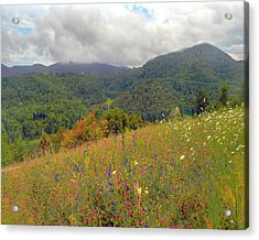 Acrylic Print featuring the photograph Smoky Mountains by Raymond Earley