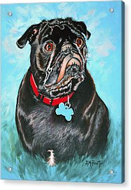 Acrylic Print featuring the painting Smug Black Pug by Donna Proctor