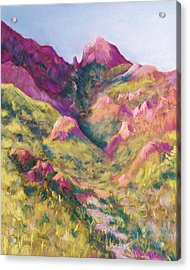 Smuggler's Gap Canyon Acrylic Print by Candy Mayer
