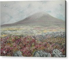 Snaefell Heather Acrylic Print by Stanza Widen