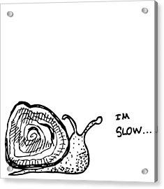 Snail - I'm Slow Acrylic Print by Karl Addison