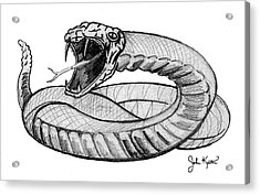 Snake Acrylic Print by John Keaton
