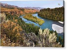 Snake River - Heise Road Acrylic Print by David Halter