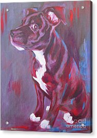 Sneaky Look - Staffy Acrylic Print