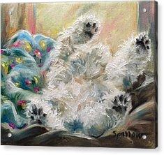 Snoozing Acrylic Print by Mary Sparrow