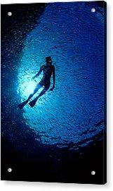 Snorkeler Acrylic Print