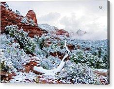 Snow 05-024 Acrylic Print by Scott McAllister