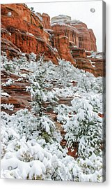 Snow 06-051 Acrylic Print by Scott McAllister