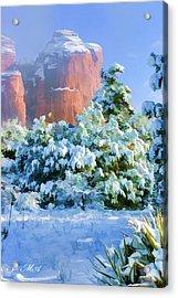Snow 07-093 Acrylic Print by Scott McAllister