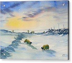 Snow And Sheep On The Moors Acrylic Print